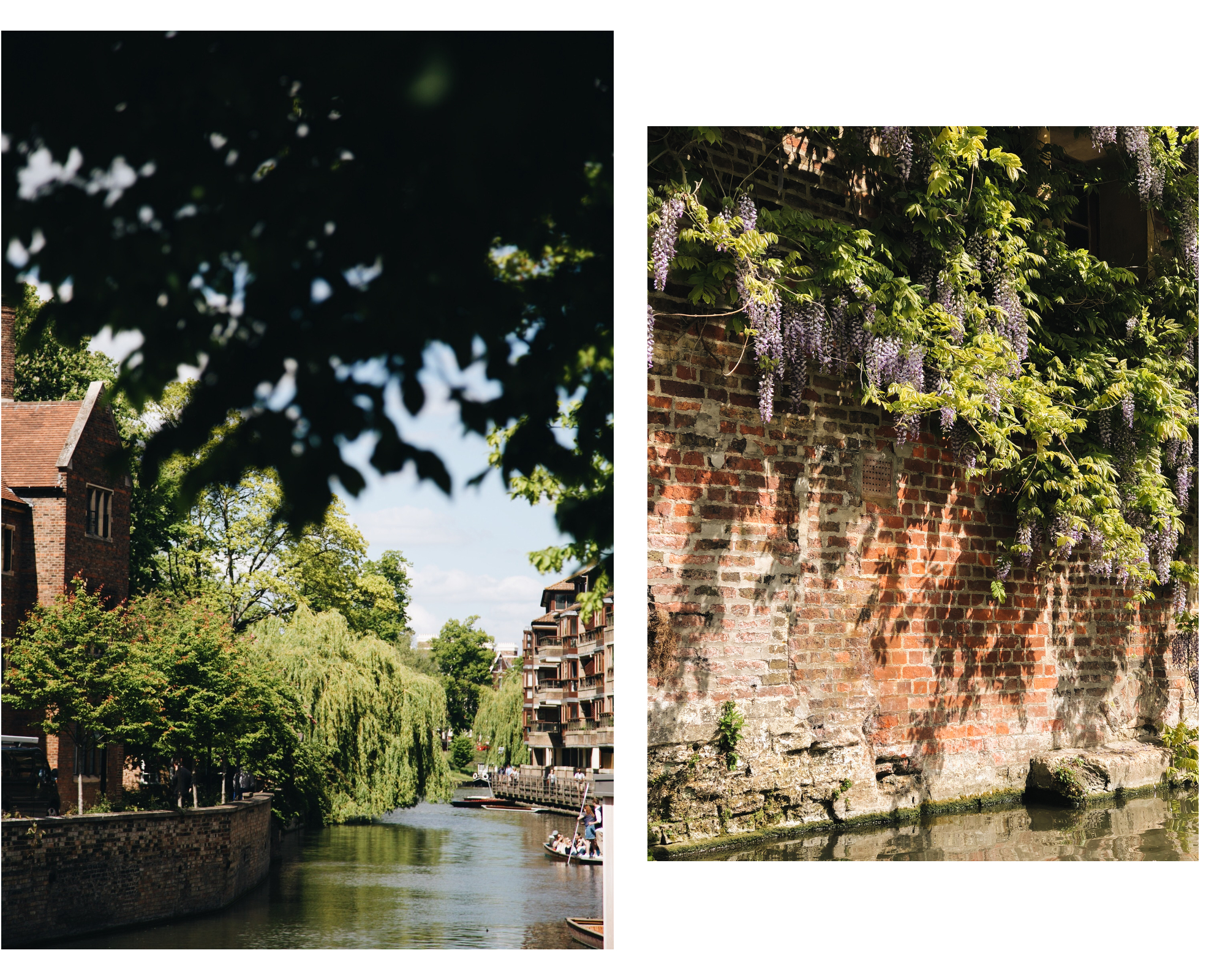cambridge-punting-barque-riviere.jpg