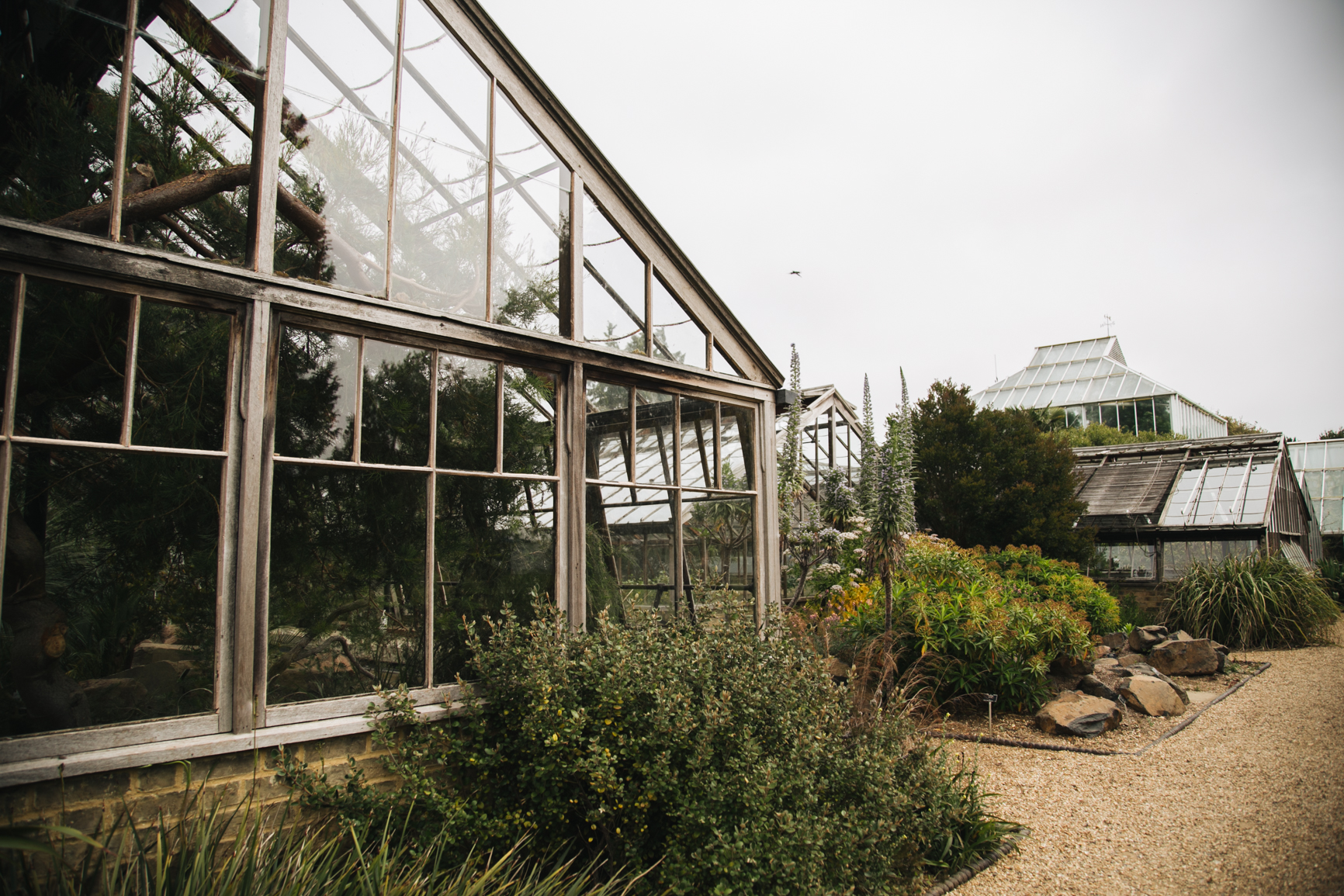 Jardin-botanique-universite-de-cambridge-travel.jpg