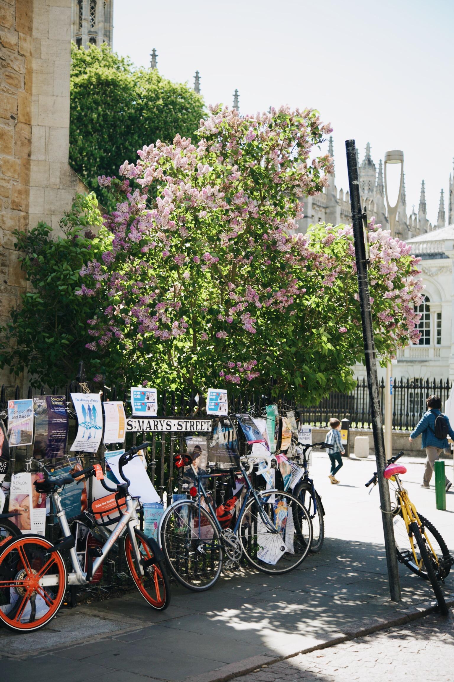 Centre historique CAMBRIDGE.JPG