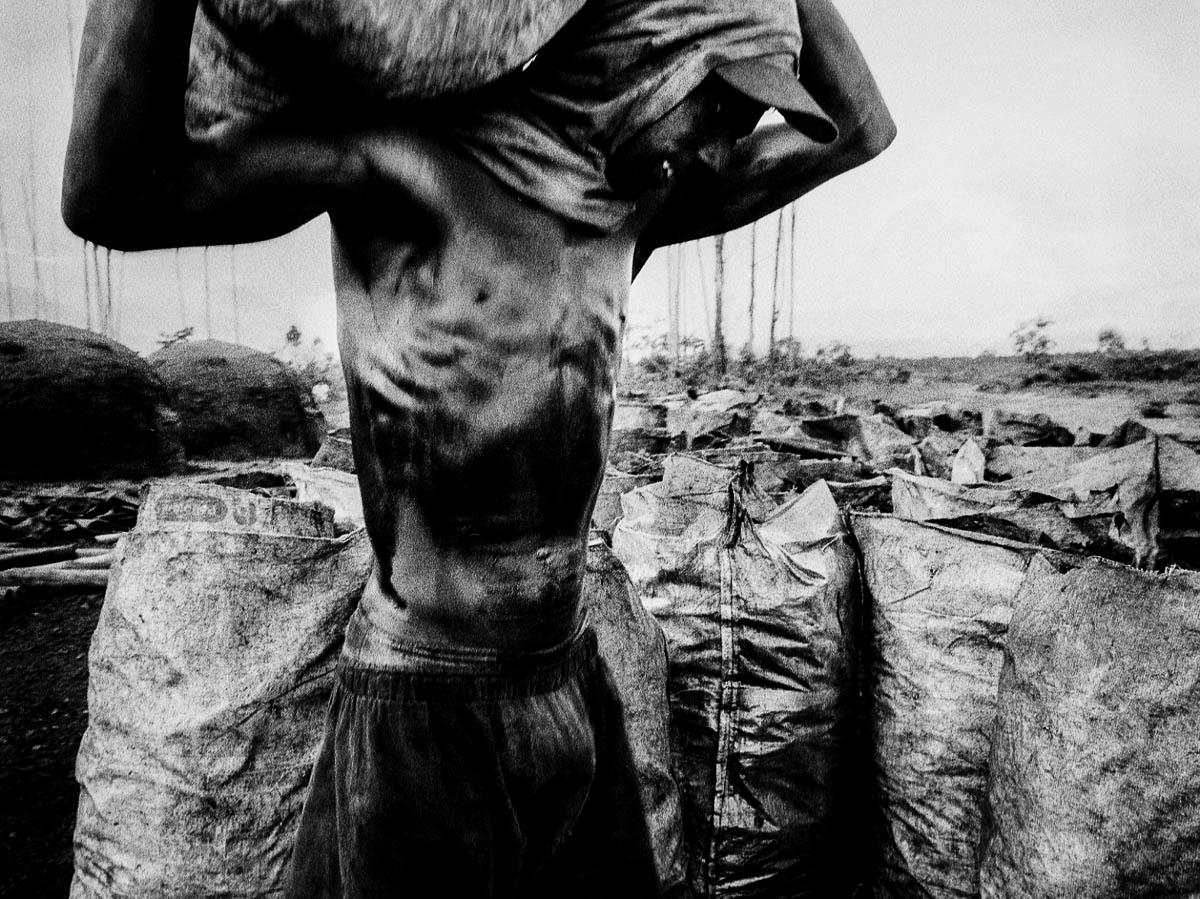 Entre 1970 e 1992, apenas no Estado do Mato Grosso do Sul, mais de um bilhão de árvores foram devastadas para atender a indústria do carvão colocando o Estado na categoria do segundo maior produtor de Carvão Vegetal do país, estatuto atingido a custa da exploração do trabalho humano e de inconsequente consumo dos recursos naturais.