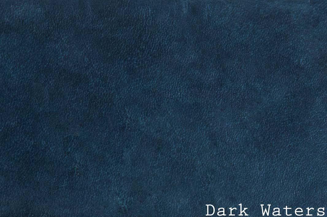 13.14-AW-Dark Waters w: text horizontal.jpg