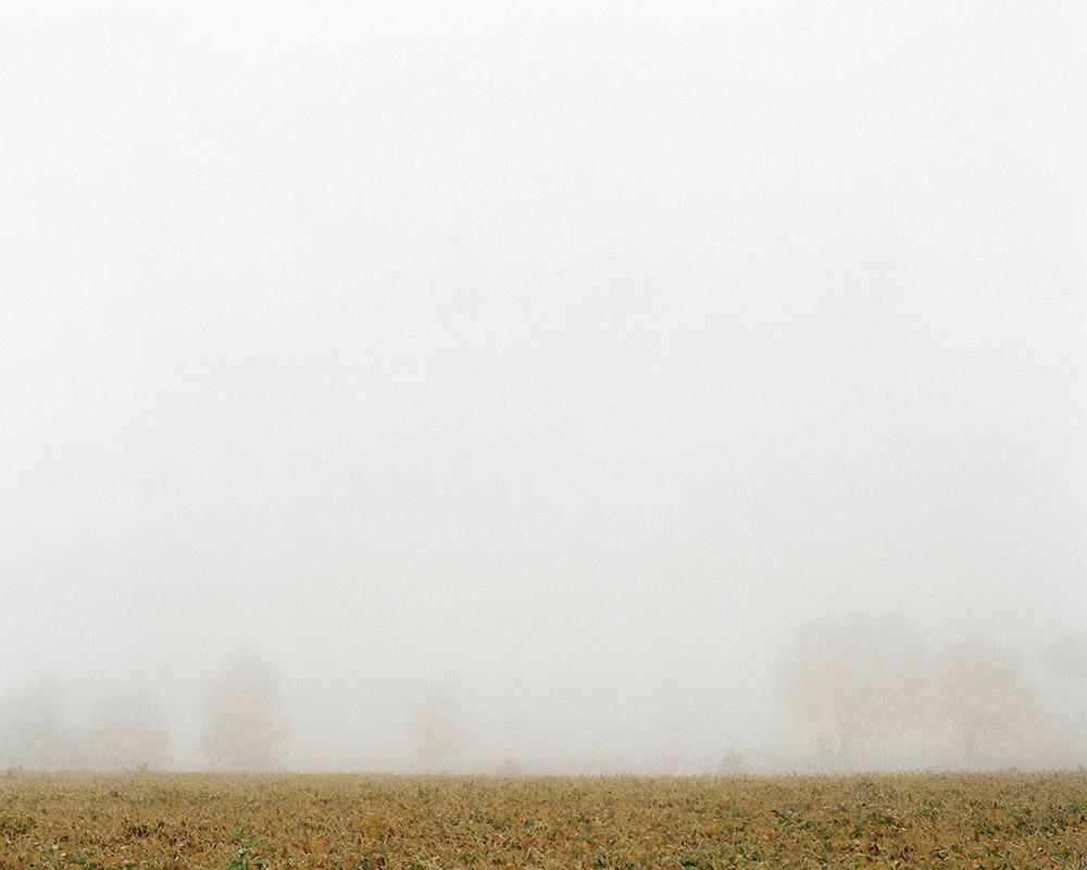Sutfin Farm (dawn)