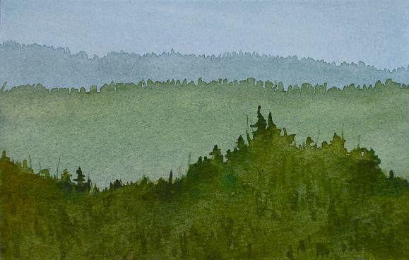 Taunus Forest