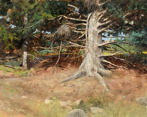 """""""Old Pine,"""" by Neal Hughes, 2016, oil, 16 x 20 in. First Place and Artists' Choice"""