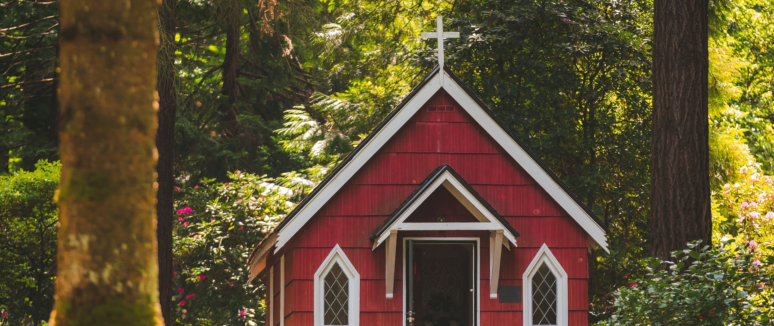 architecture-bright-catholic-710905.jpg