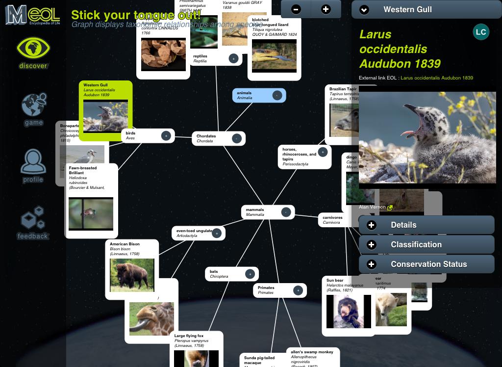 Capture d'écran du Simulateur iOS 1 juil. 2013 17.38.10.png