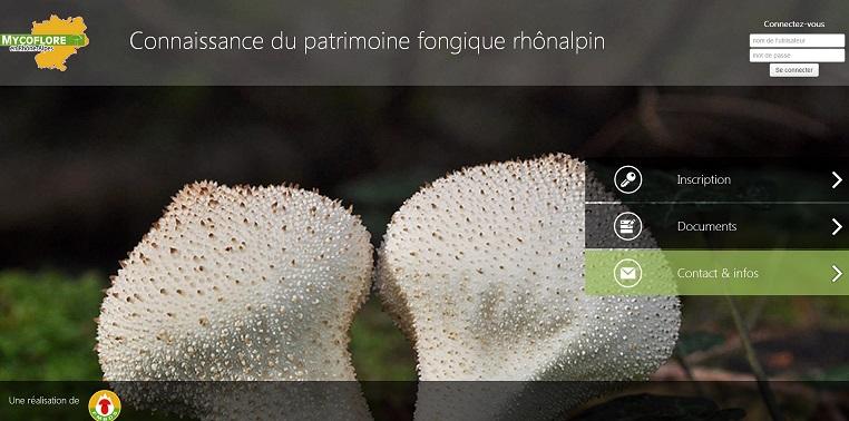Mycoflore.jpg