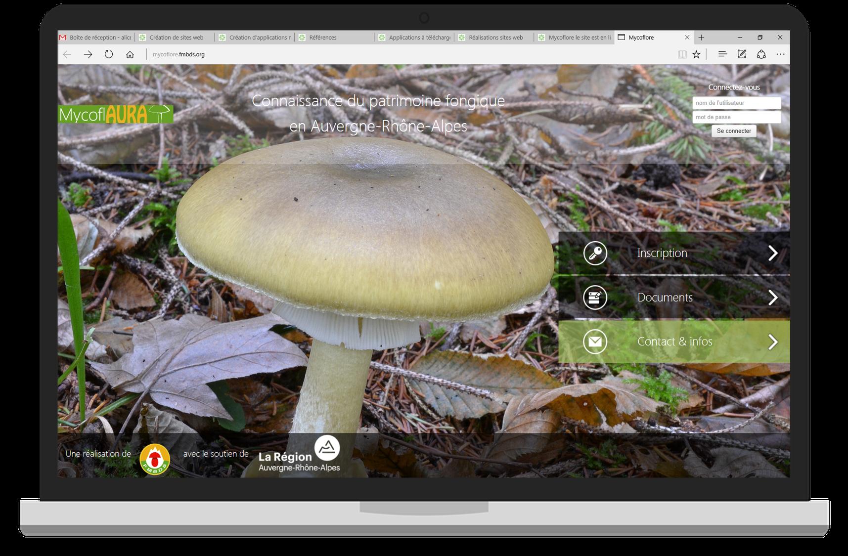 Le site de Mycoflore est en accès ici:   http://mycoflore.fmbds.org/    A vous de jouer pour participer à la sauvegarde mycologique en Rhône-Alpes.