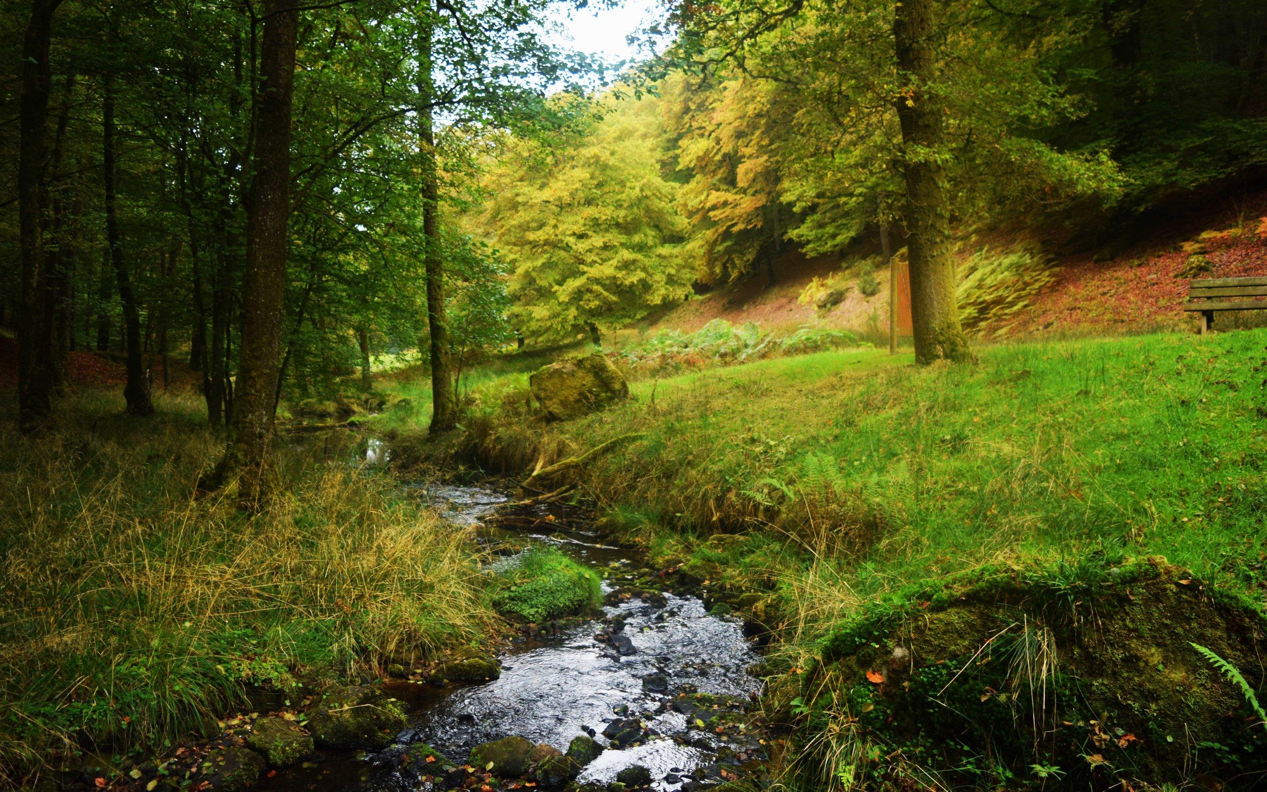 Balade biodiversité - Ecobalade - crédit sabine Meneut