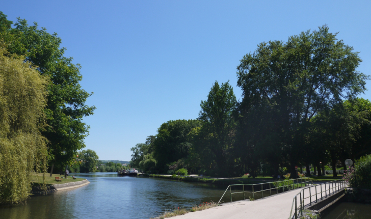 Sentier botanique n°2 : Auxerre