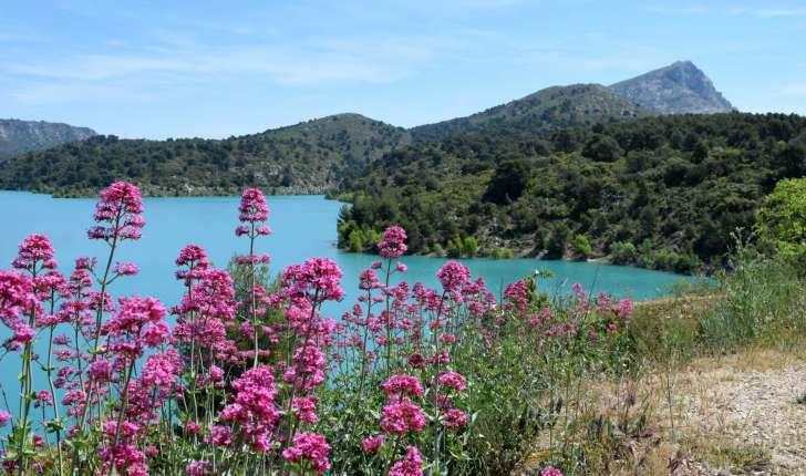 Sentier botanique n°5 : le lac de Bimont