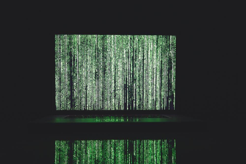 Mur de données ou mur végétal ?