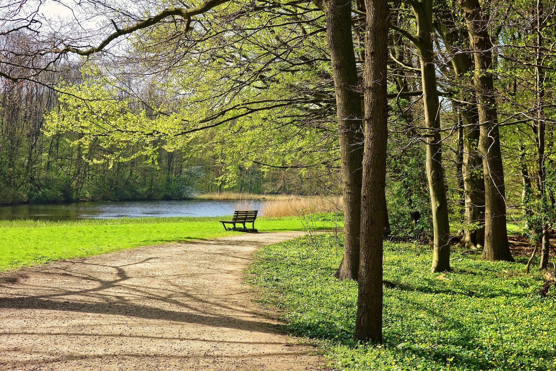 Comment réussir à concilier ville et nature ?