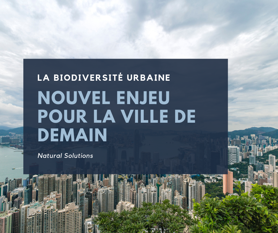 La biodiversité urbaine, un nouvel enjeu pour la ville de demain