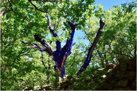 Land art arble bleu.JPG