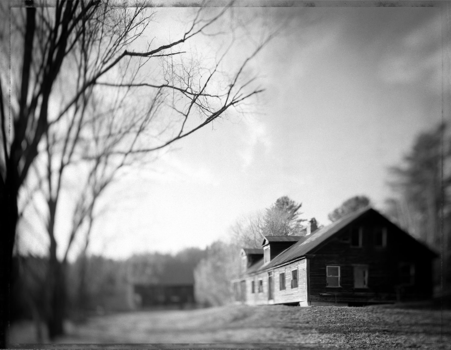 MMalloy_ScarTissue69_Gibson_House_from_the_Road.jpg