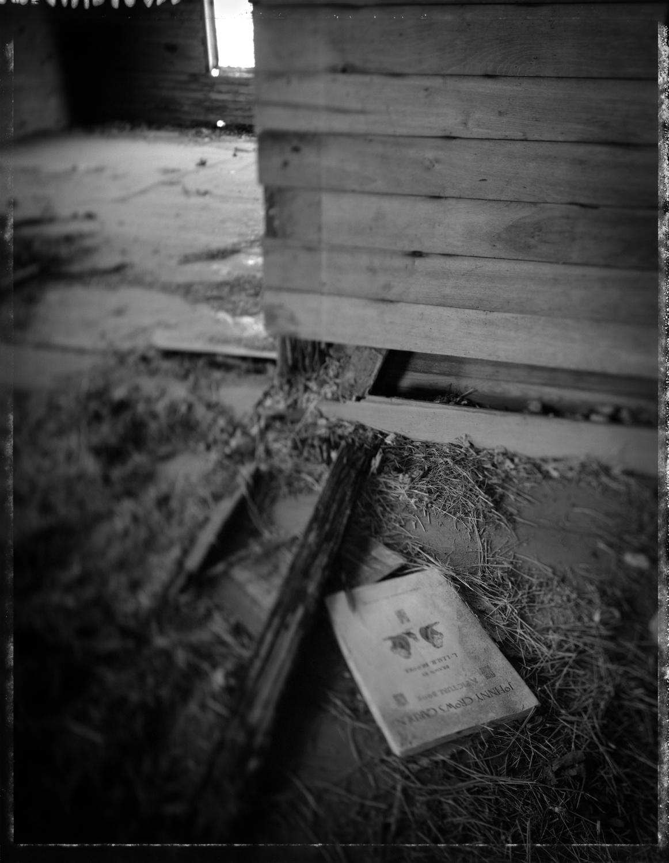 MMalloy_ScarTissue69_Johnny Crow's Garden.jpg