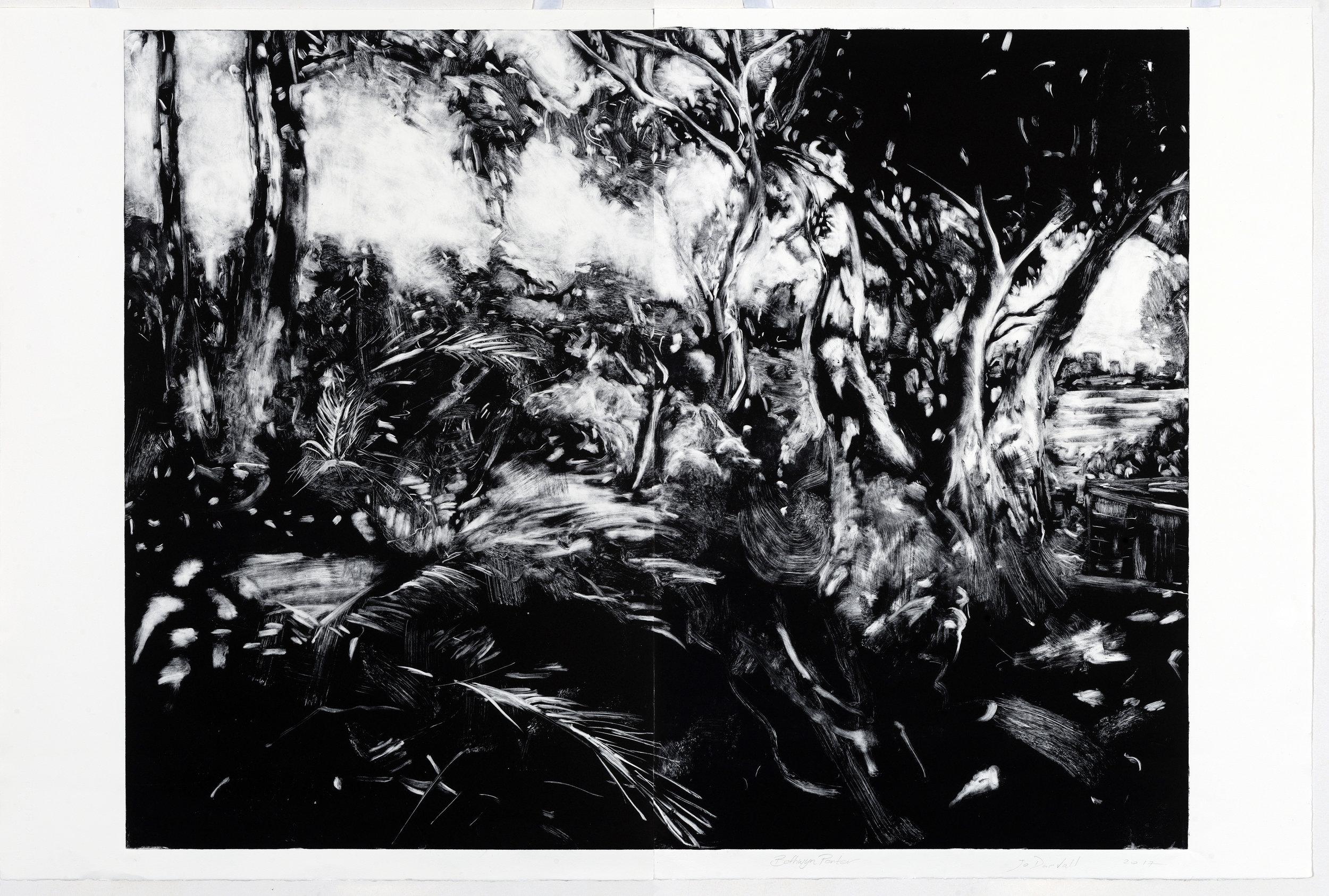Heathcote Prints No 3 2017