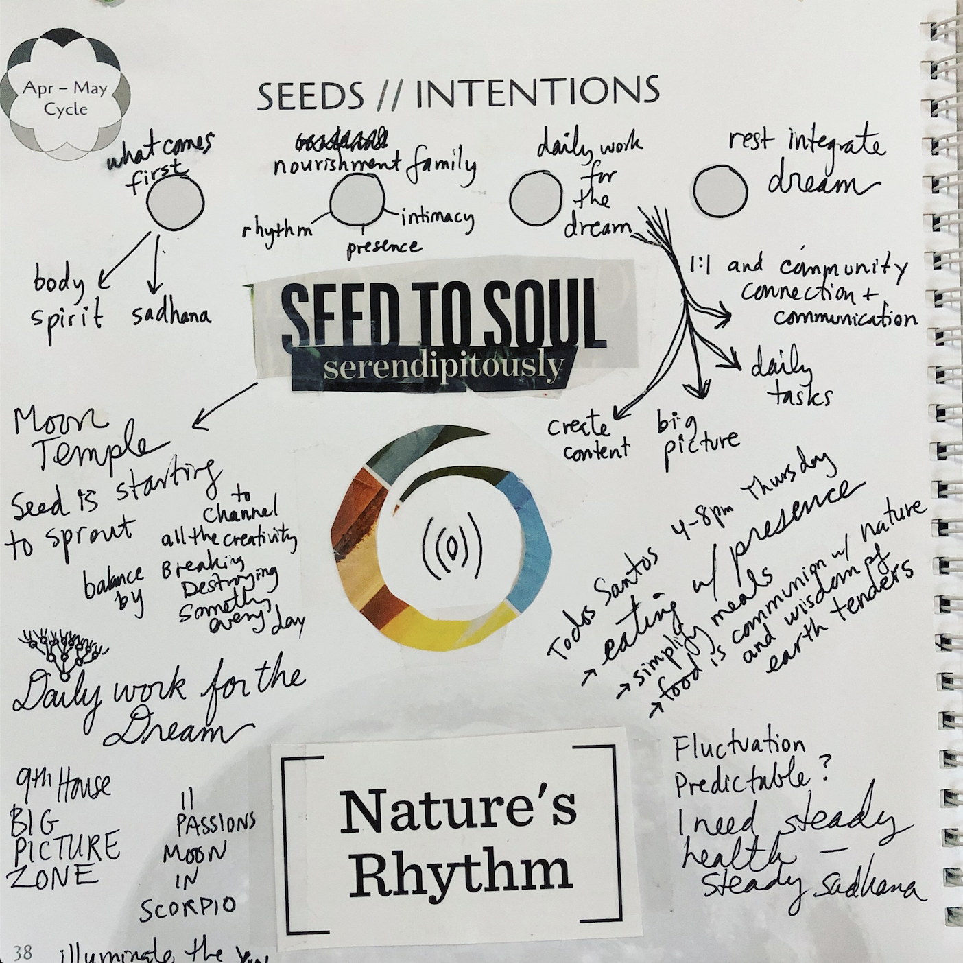 Seed to Soul New Moon Calendar Journal.png