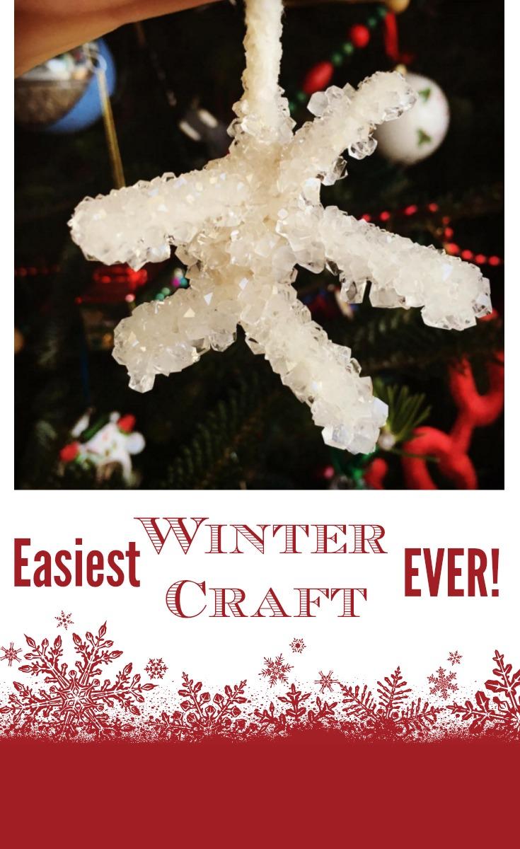 easy winter craft.jpg