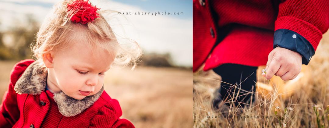 collage29.jpg