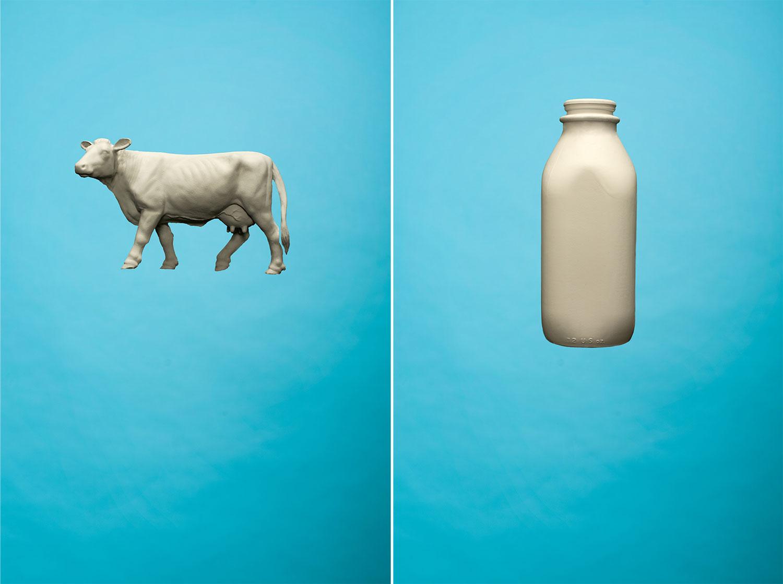 cow_dip_forweb.jpg