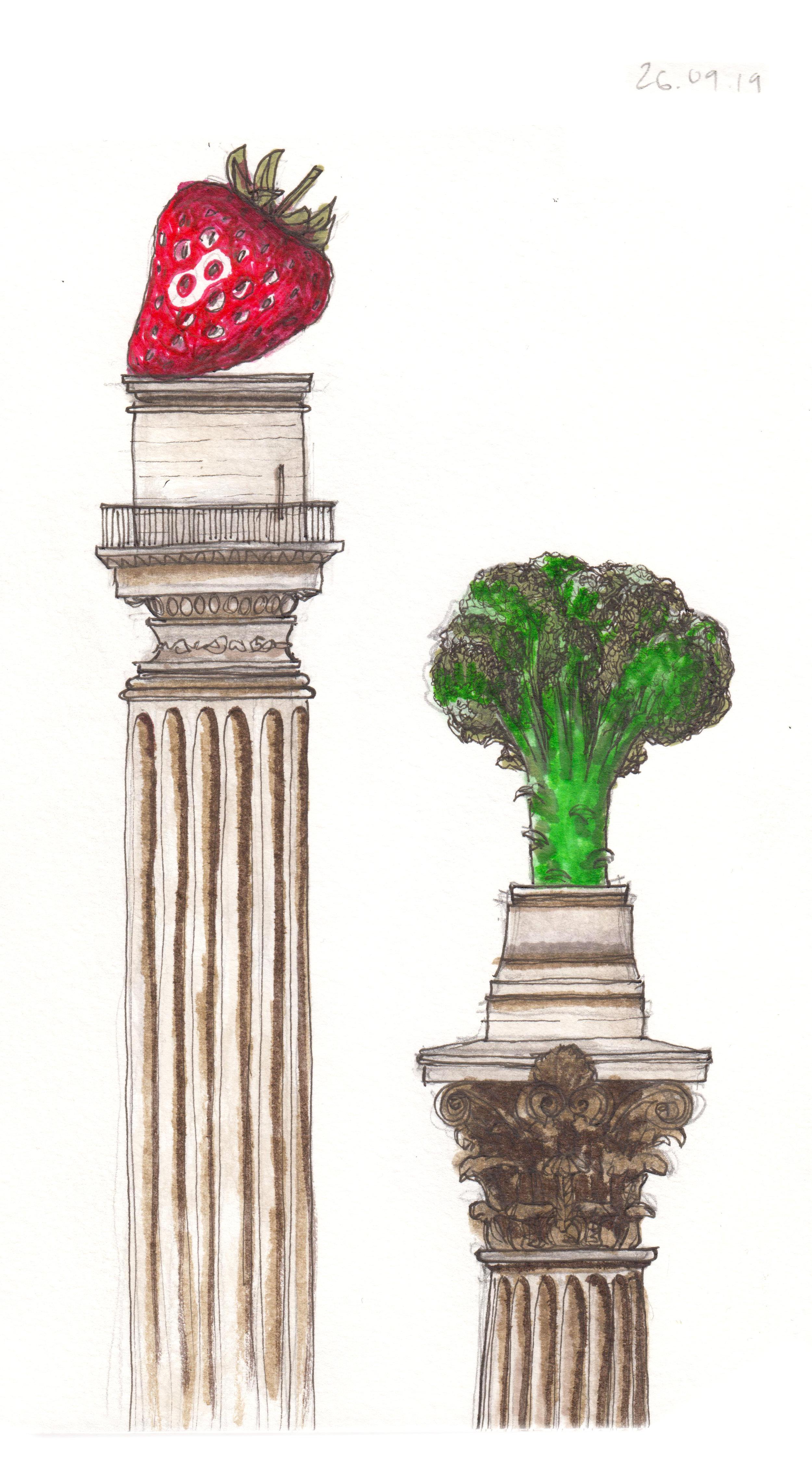 26.09.19 ... Nelson's strawberry & Monument broccoli