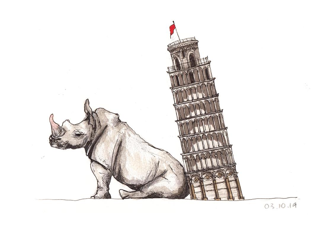03.10.19 ... rhino pisa