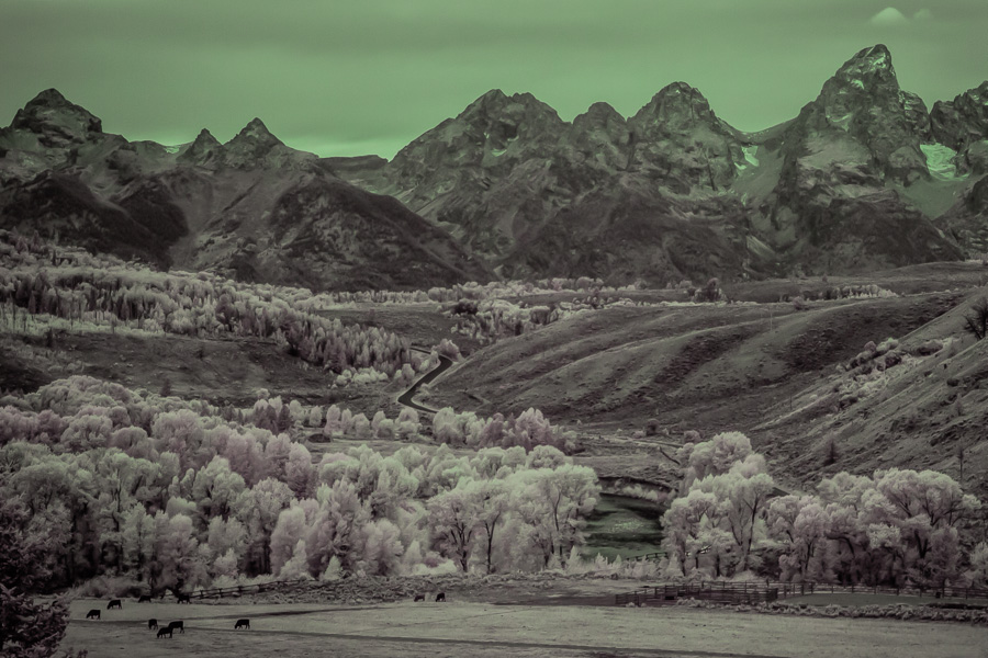 Infrared Mountain Scene