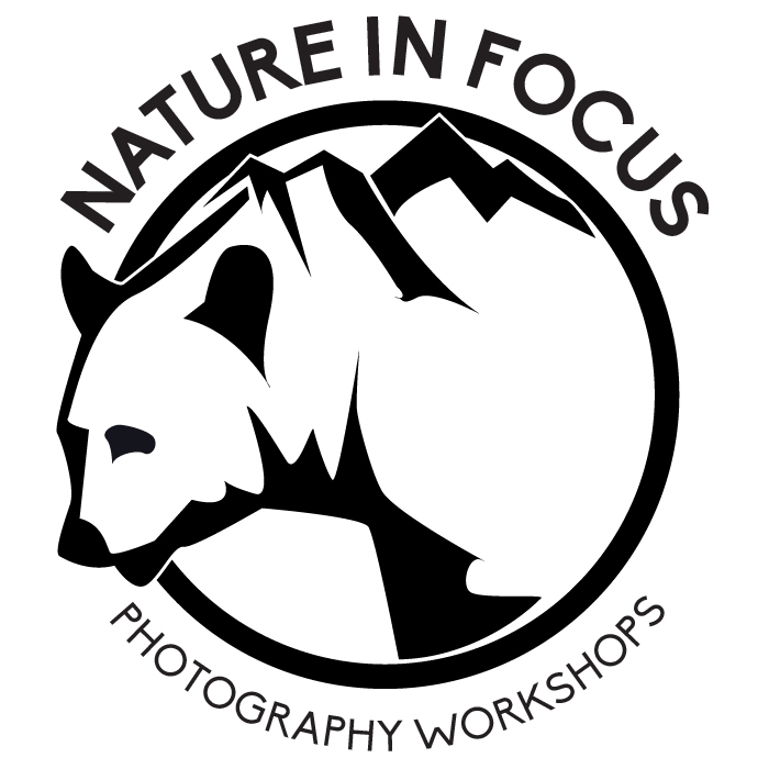 Nature In Focus Photography Workshops