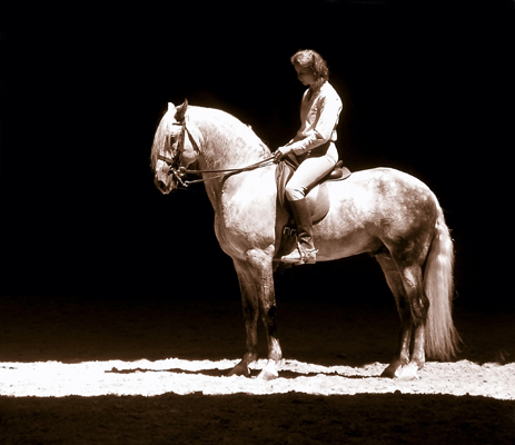 Bettina Drummond riding her stallion Ilyad.  Photo by Mari Austad-Bourque