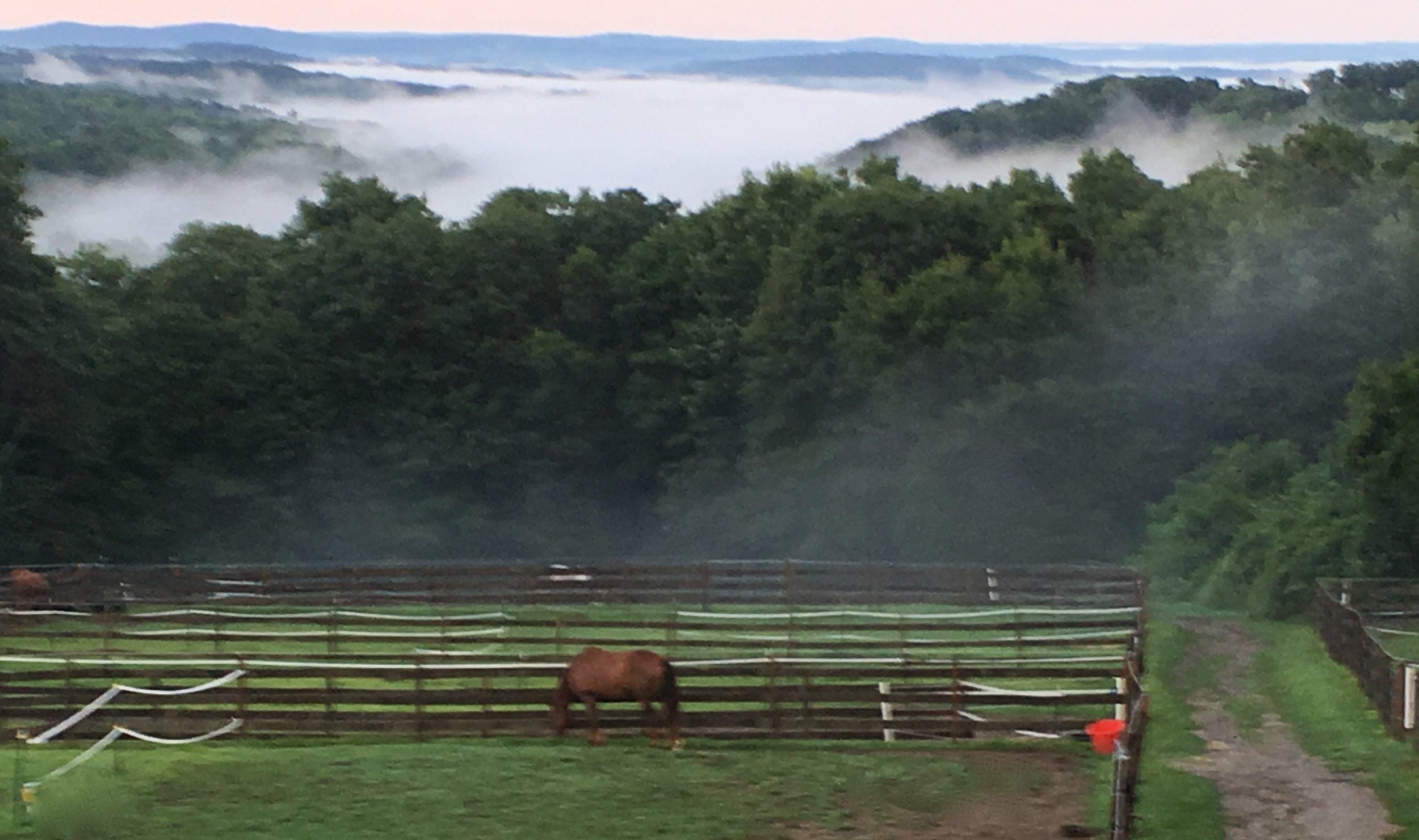 Windhorse view.JPG