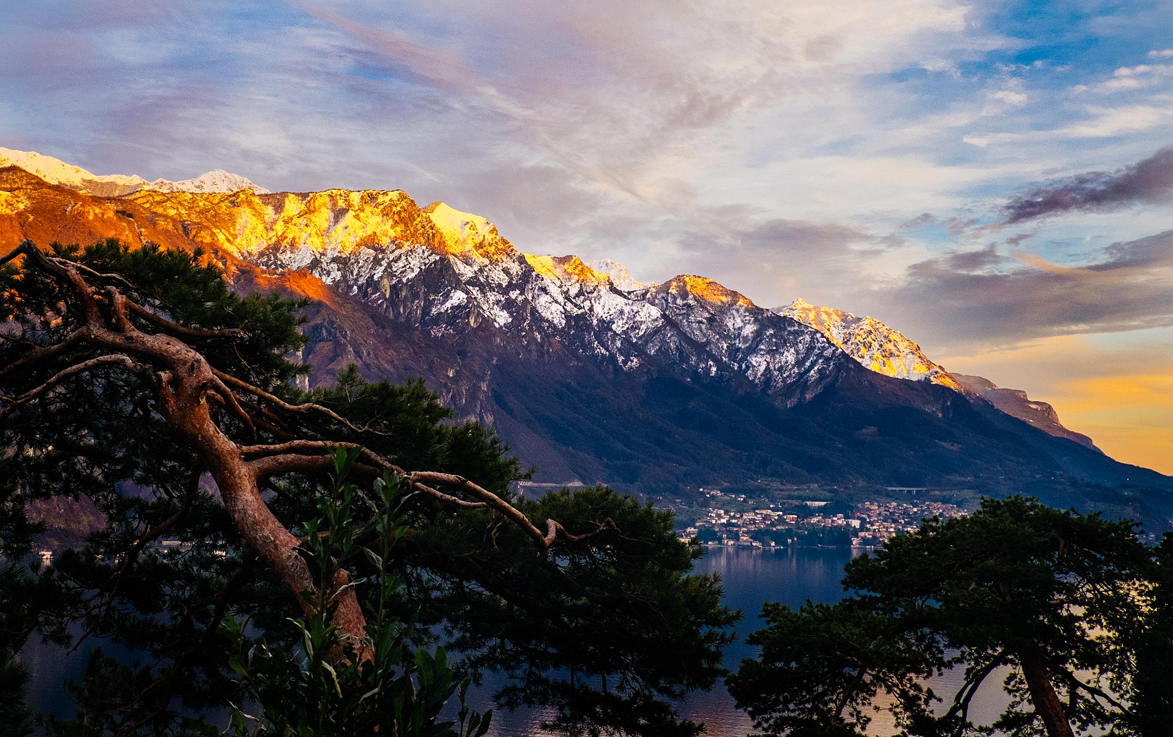 The town of Menaggio, Italy peeks through cypress trees on Lake Como.