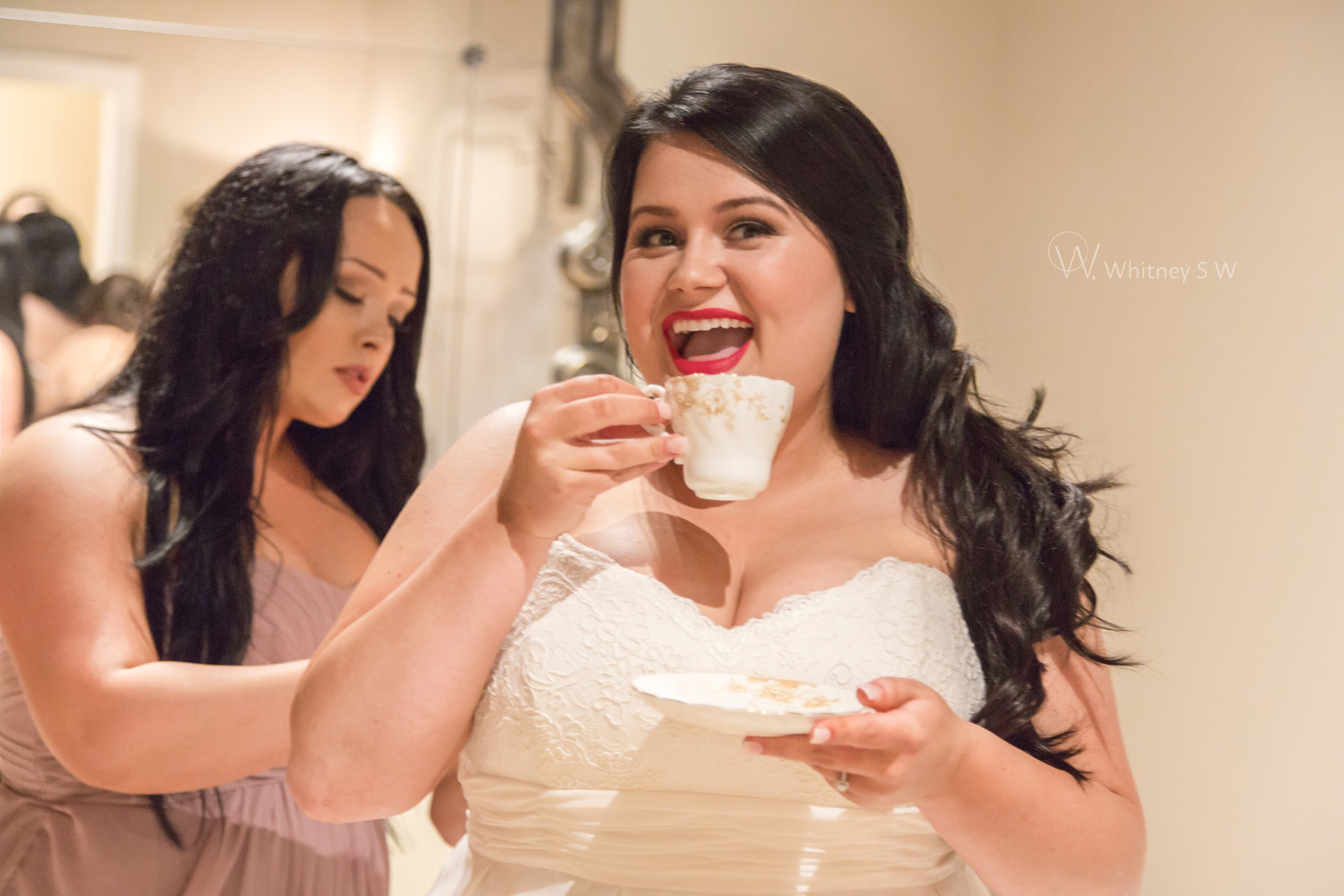 SimpsonFalinWedding_Photography by Whitney S Williams (69).jpg