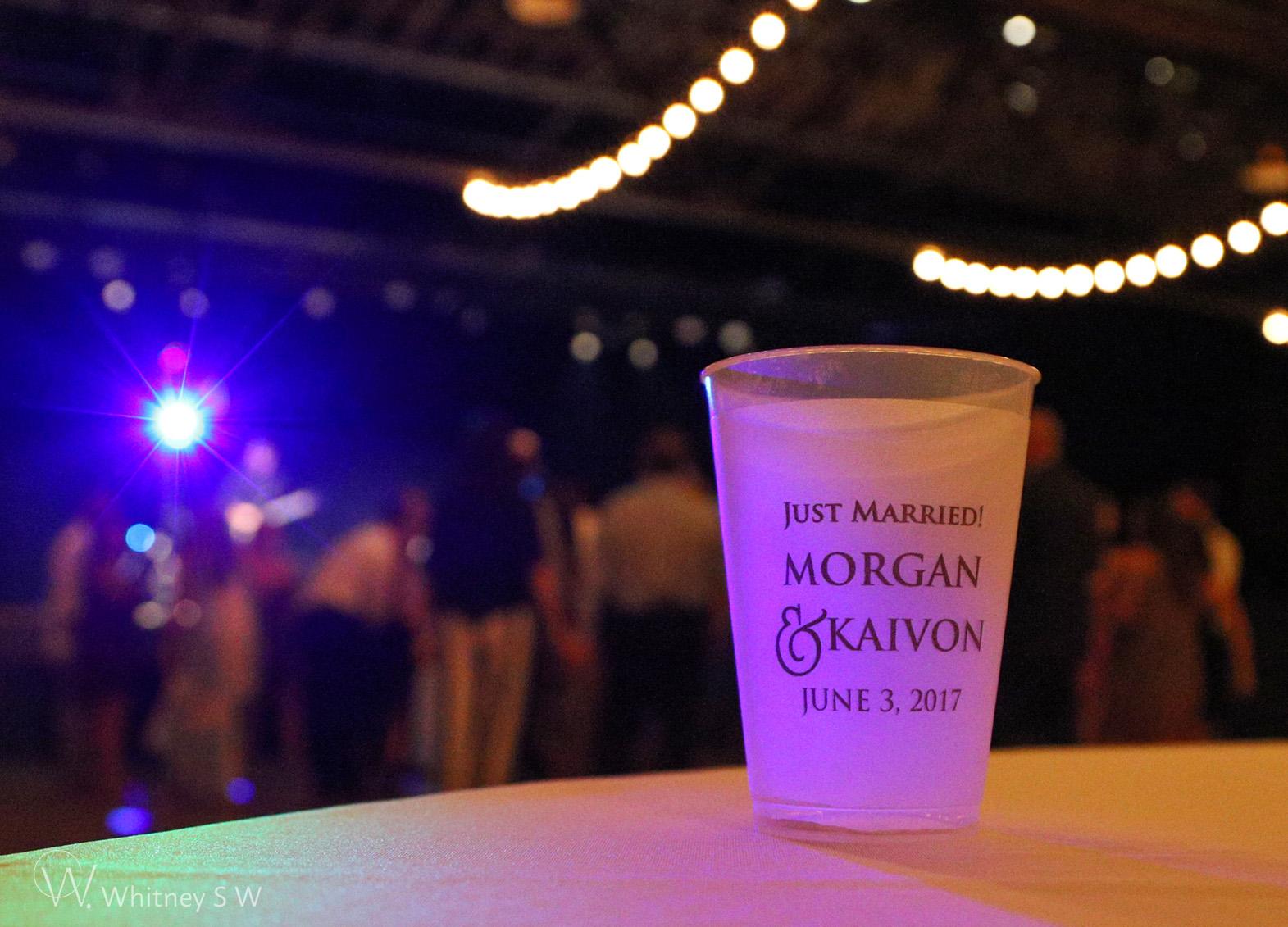 Morgan & Kaivon Wedding - Photography by Whitney S Williams whitneysw (51).jpg