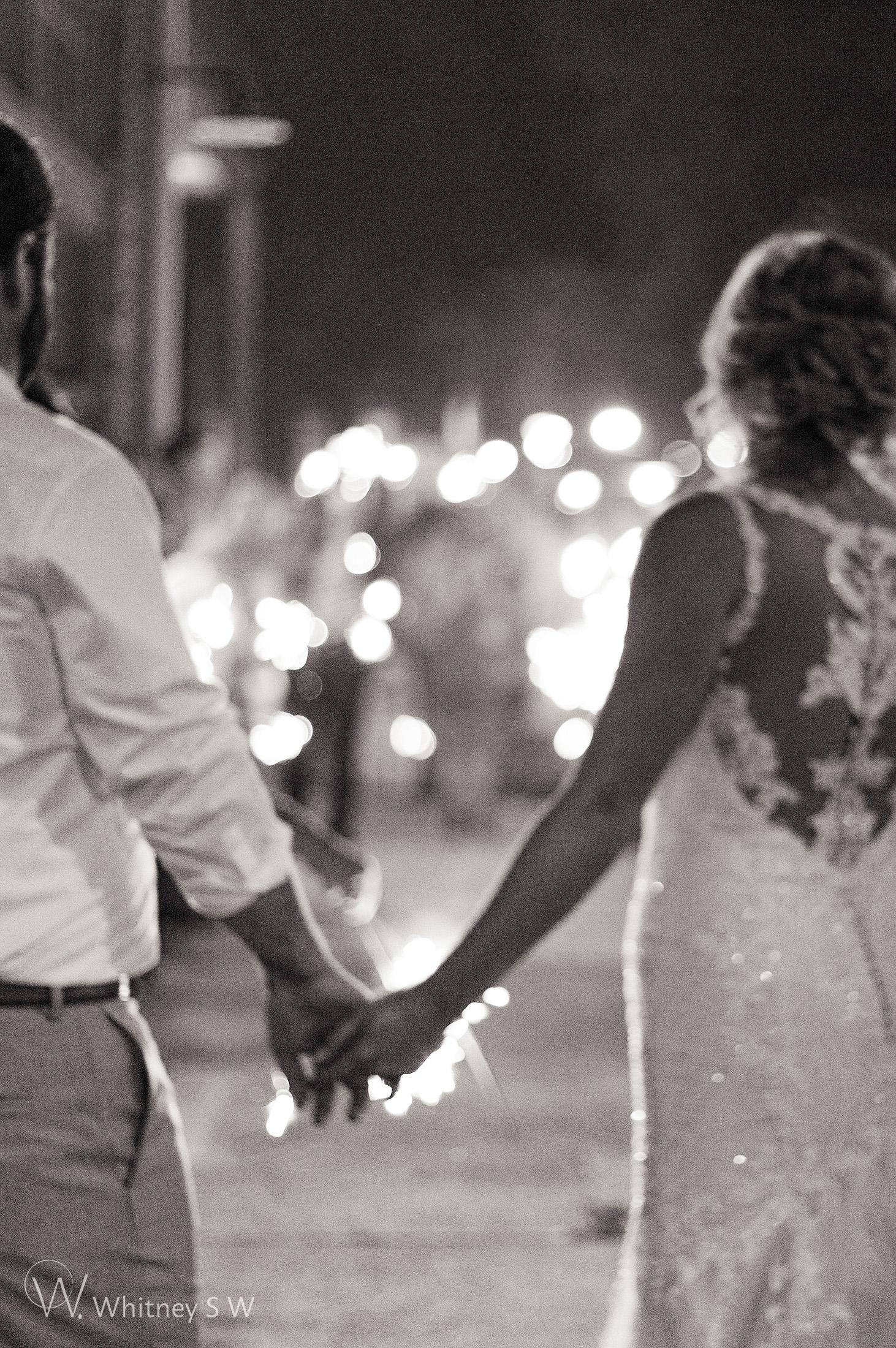 Morgan & Kaivon Wedding - Photography by Whitney S Williams whitneysw (52).jpg
