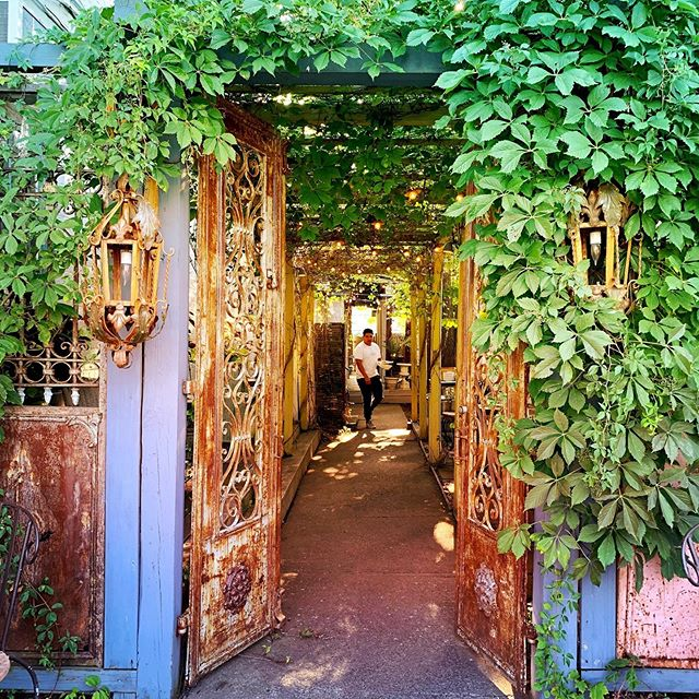 Surround yourself in nature's magic.🌿✨🦚🌅#sunset #garden #vines #magic #hudsonvalley #upstate #upstateny #rhinebeck #rhinebeckny #libertypublichouse #libertyofrhinebeck