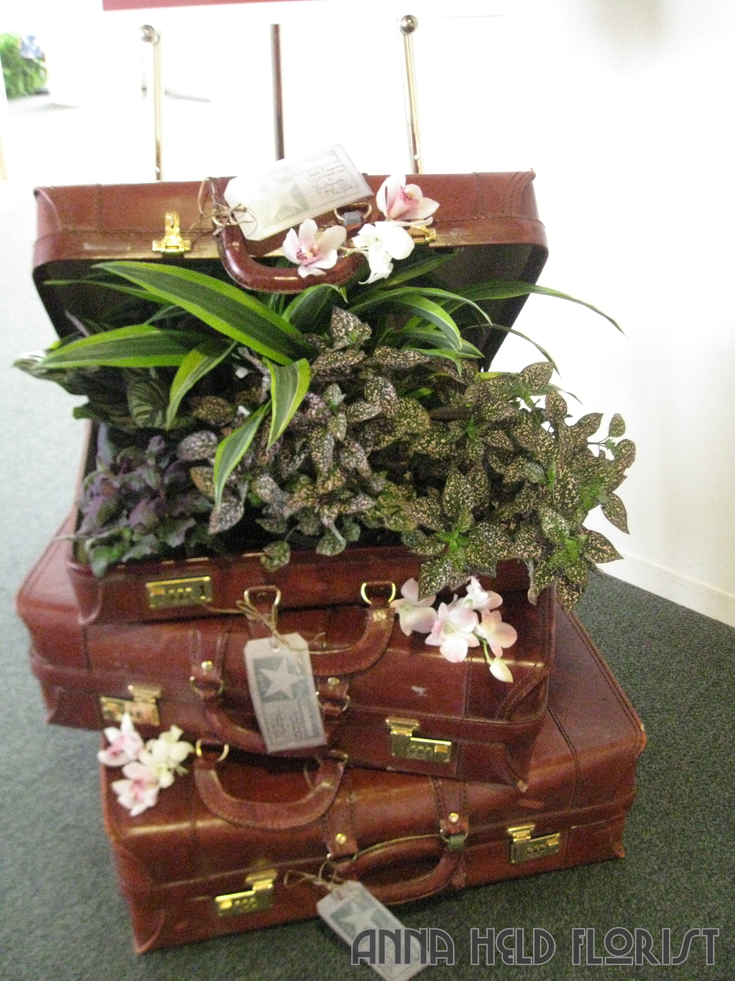 titanic suitcase.jpg