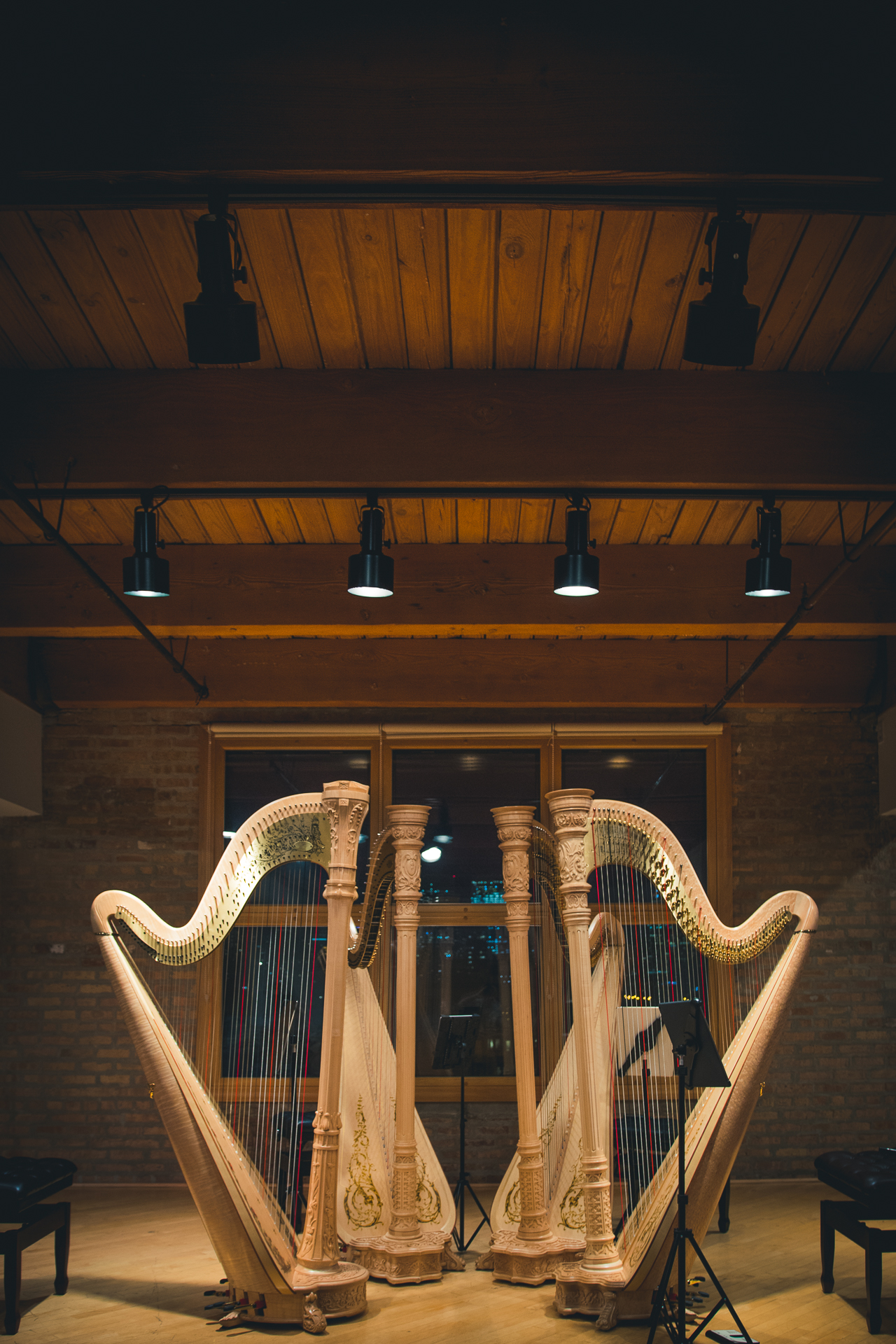 Chicago Harp Quartet-5.jpg
