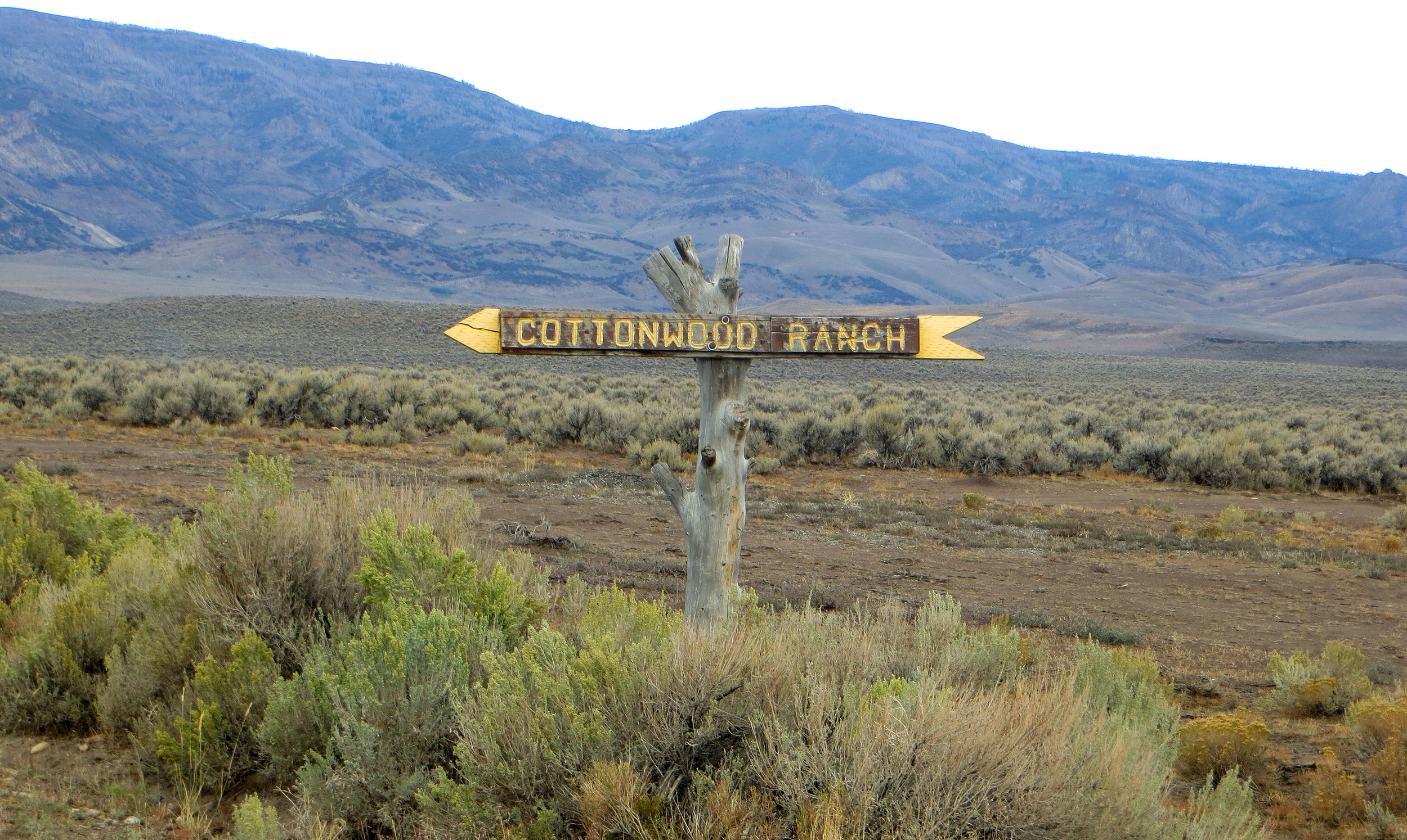 Cottonwood Ranch Sign.jpg