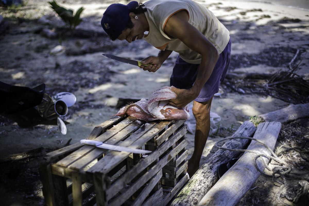 Desayuno: Today's breakfast is fresh caught fish.