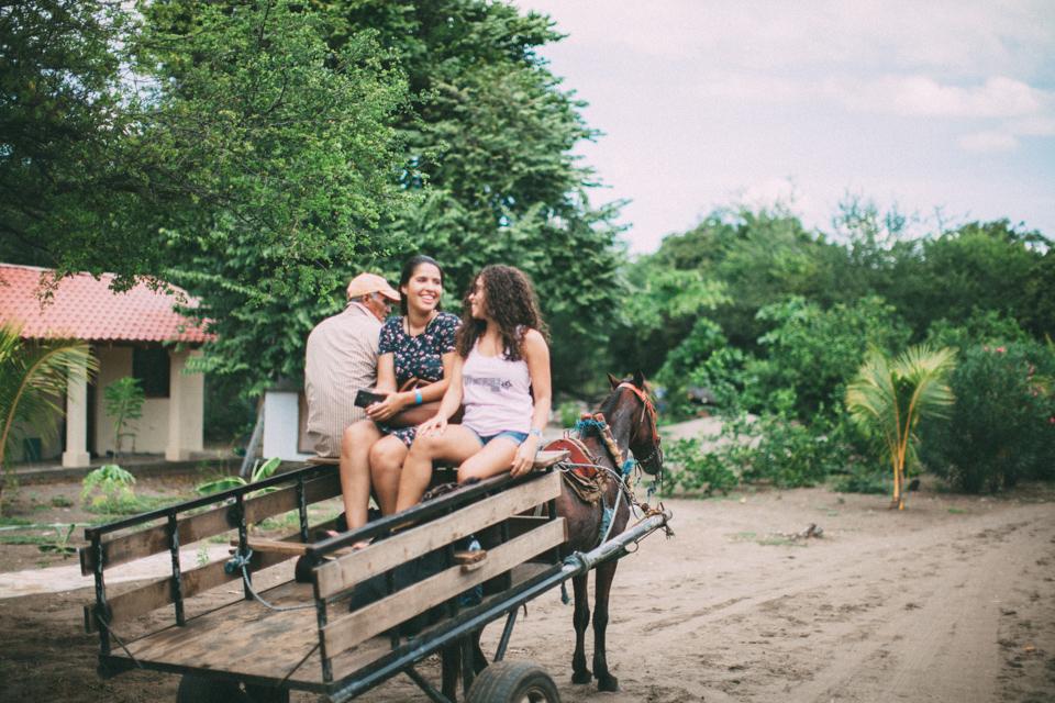 horse carriot nicaragua