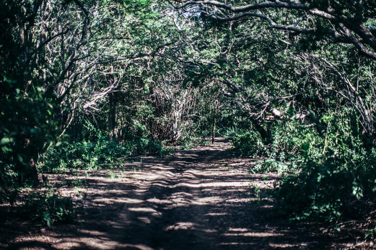 road nicaragua