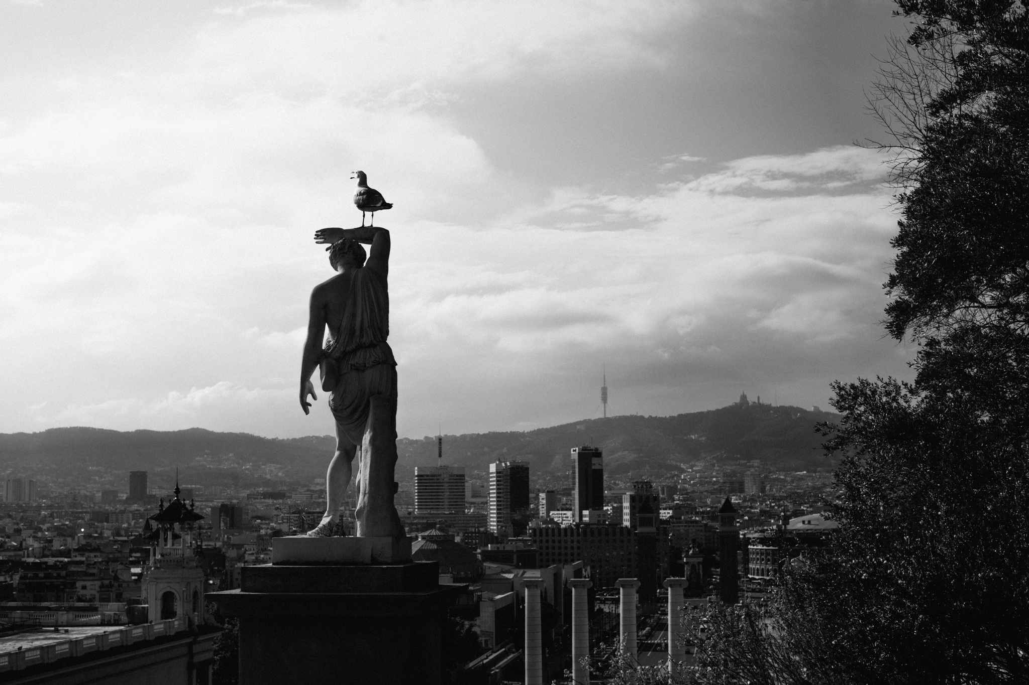 BCN statue