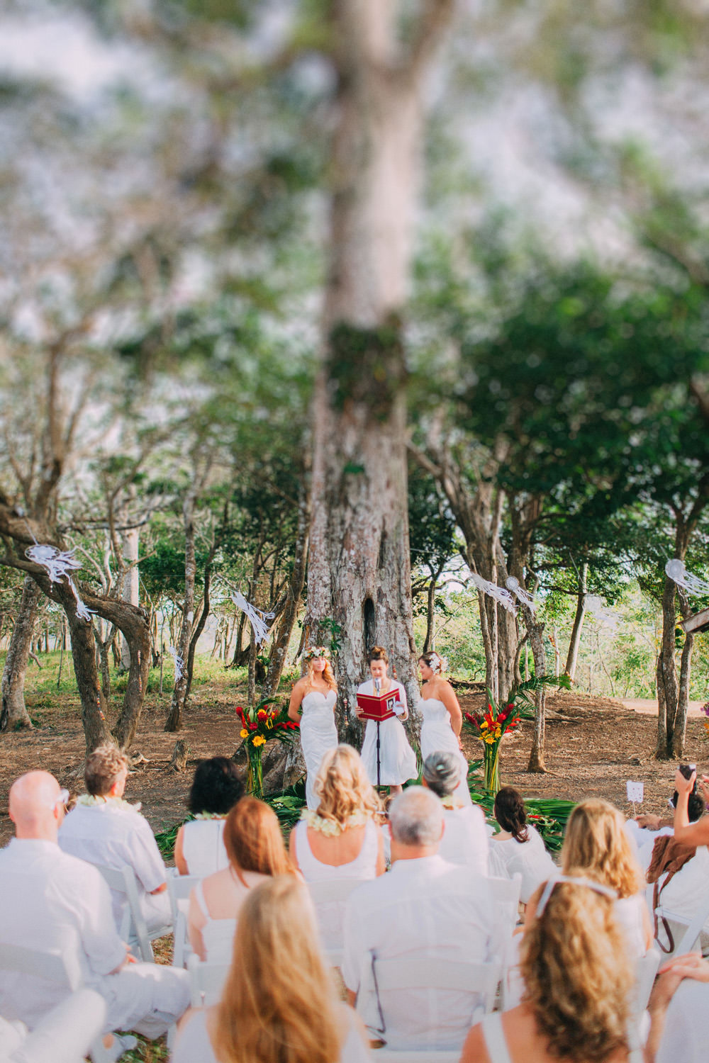 Jungle Wedding under the tree. Nicaragua