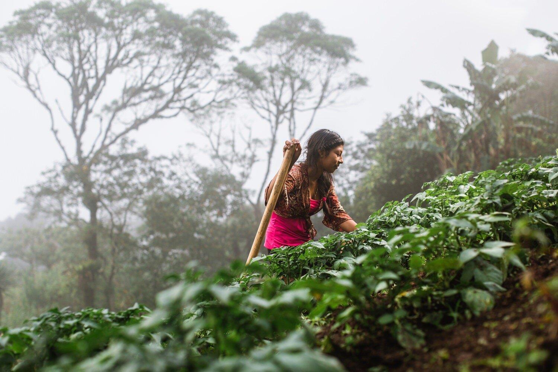 indigenous farmer photography - humanitarian photographer nicaragua-Exposure.jpg