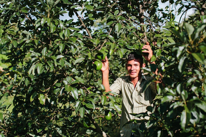 Portrait of a farmer - guatemala-Exposure.jpg