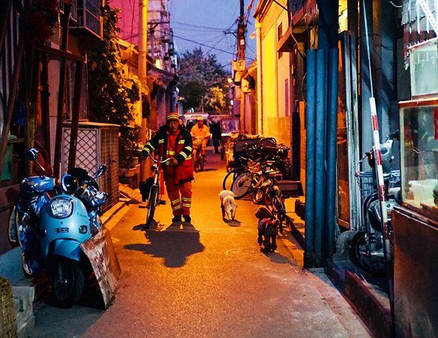 Beijing hutongs are so full of life and color, whether it's day or night. . . . . #beijing #beijinglife #chinaliving #thatsbeijing #livinginasia #asiatravel #chinadestinations #hutongs #beijing🇨🇳 #instabeijing #worldexplorer #travelfar #wanderoften #letsflyaway #travelerlife #travelpassion #femmetravel #mytinyatlas #explorerbabes #gltlove #pinktrotters #exploreasia #travelgram #orange