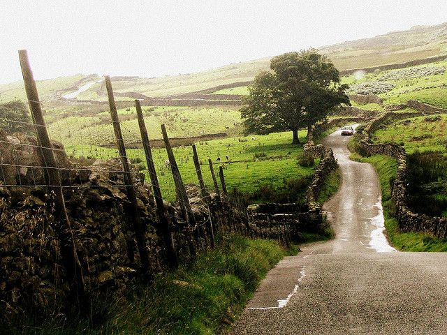 85cc8630c164688bbc5dc5f016f79ff6--country-roads-country-life.jpg