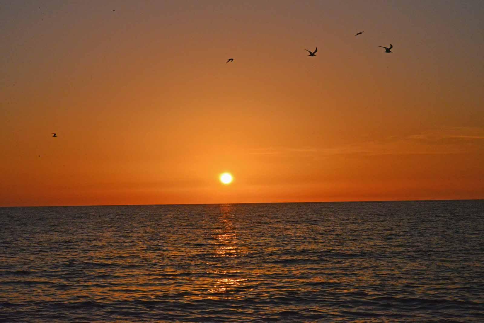 Captiva Sunset 9.14.jpg